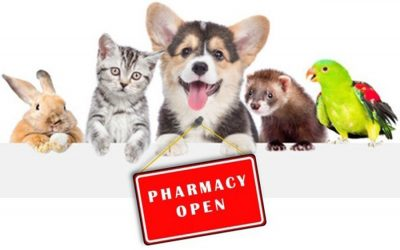 Purr-fecting Pet Health in Your Pharmacy